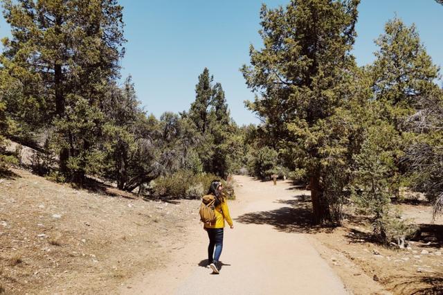 走上美国加州美洲狮鬃毛步道,一窥太平洋屋脊步道的面貌