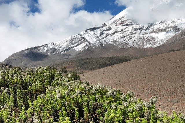 在南美洲厄瓜多尔钦博拉索火山上徒步,雪山比珠穆朗玛峰要高