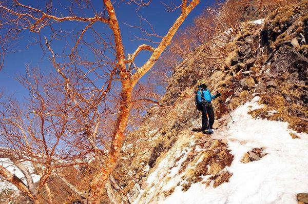 户外登山迷路或是掉队了,到底该怎么办?