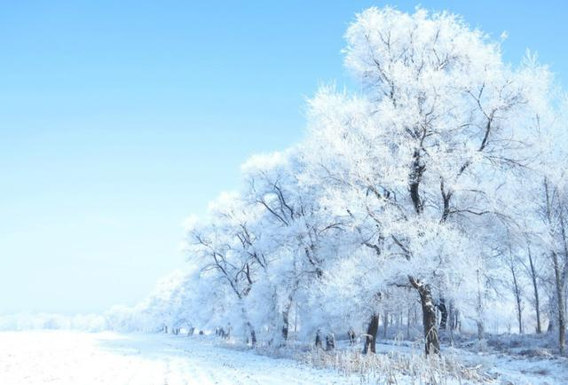 雾淞岛,此生看过最美的雪景